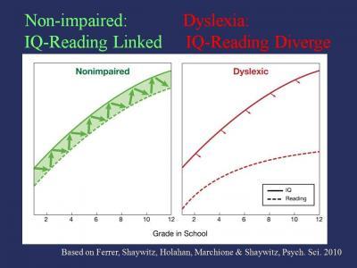 dyslexia iq graph