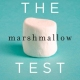 Present Verses Future Orientation: What the Marshmallow Test can Teach us Today